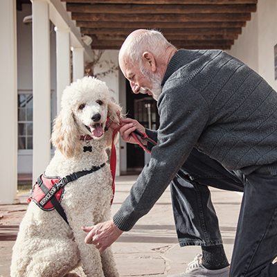 South Dakota CE:Assistance Animals And Fair Housing
